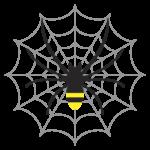 クモ 蜘蛛の巣 イラスト