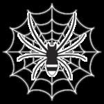 クモ 蜘蛛の巣 イラスト 白黒