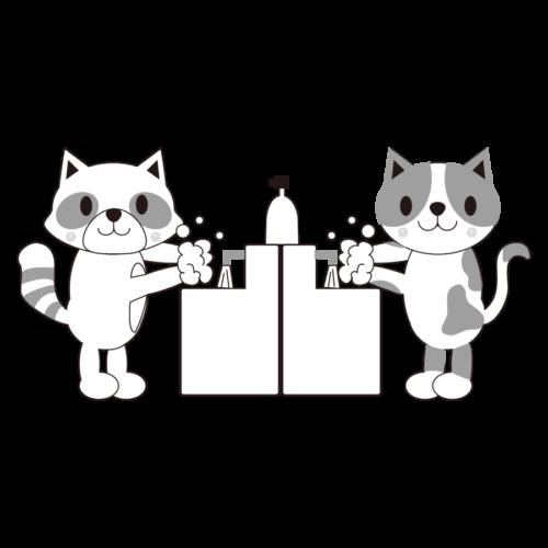 動物 手洗い イラスト 白黒 モノクロ たぬき 猫