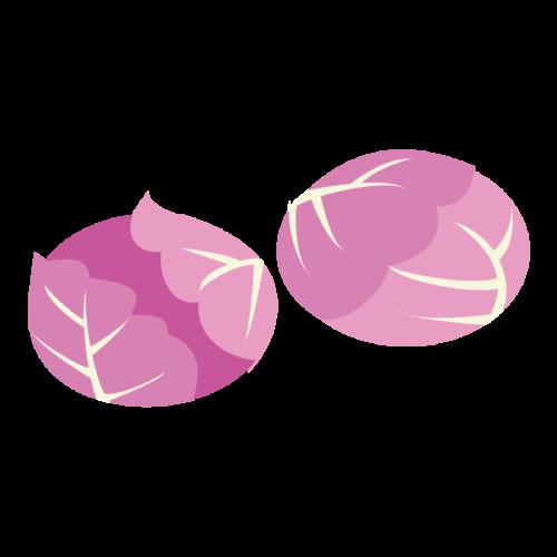 紫キャベツ かわいい イラスト フリー 無料